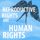 reproductive_human_rights~3